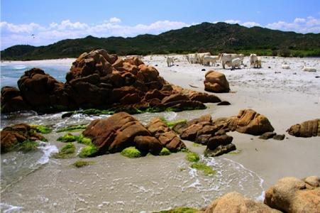 Spiaggia di Berchida, einer der Traumstrände Sardiniens